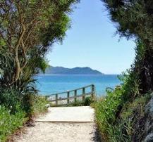 Das Foto zeigt einen in die Ferne laufenden Weg, der durch ein das Bild umrahmendes Gebüsch den Blick auf das Meer und eine Insel freigibt