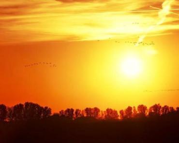 Das Foto zeigt am unteren Bildrand einen im Dunklen liegenden, bewaldeten Hügelsaum. darüber die untergehende gelbleuchtende Sonne im gold und orange gefärbten Abendhimmel. Das Bild trägt den Titel: Depression - Reise durch das Land der Schatten