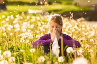In einer Wiese sitzendes Mädchen hat Heuschnupfen, niest und schneuzt