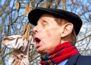 Mann hat Niesanfall wegen Pollenallergie (Heuschnupfen). Im Hintergrund blühender Haselstrauch.