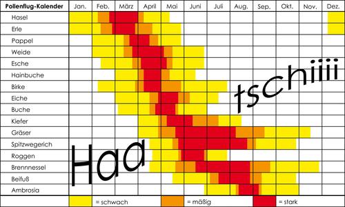 tabellarischer pollenflugkalender bei heuschnupfen