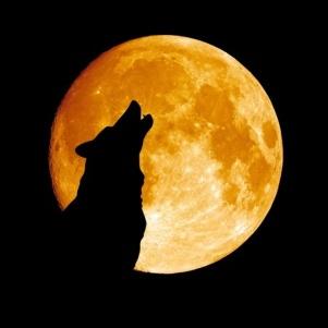 Der innere Wolf